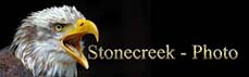 Link zu Stonecreek - Photo